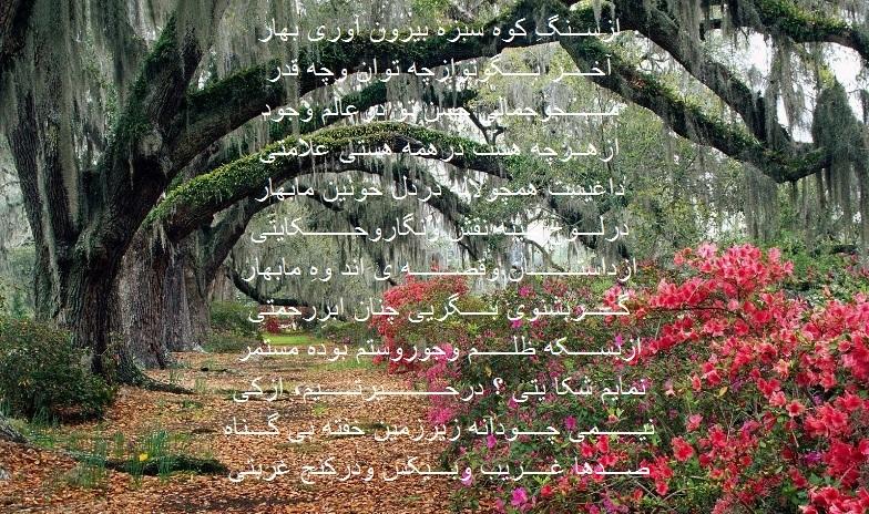 Bahaar2