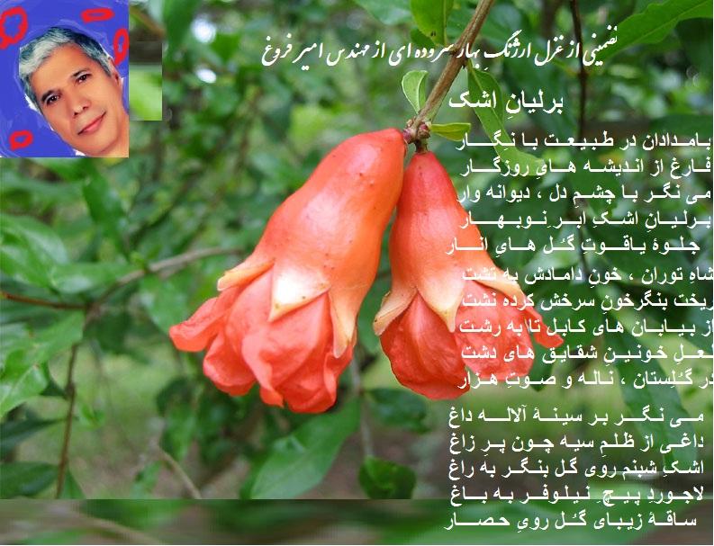 Berliane Ashk 08