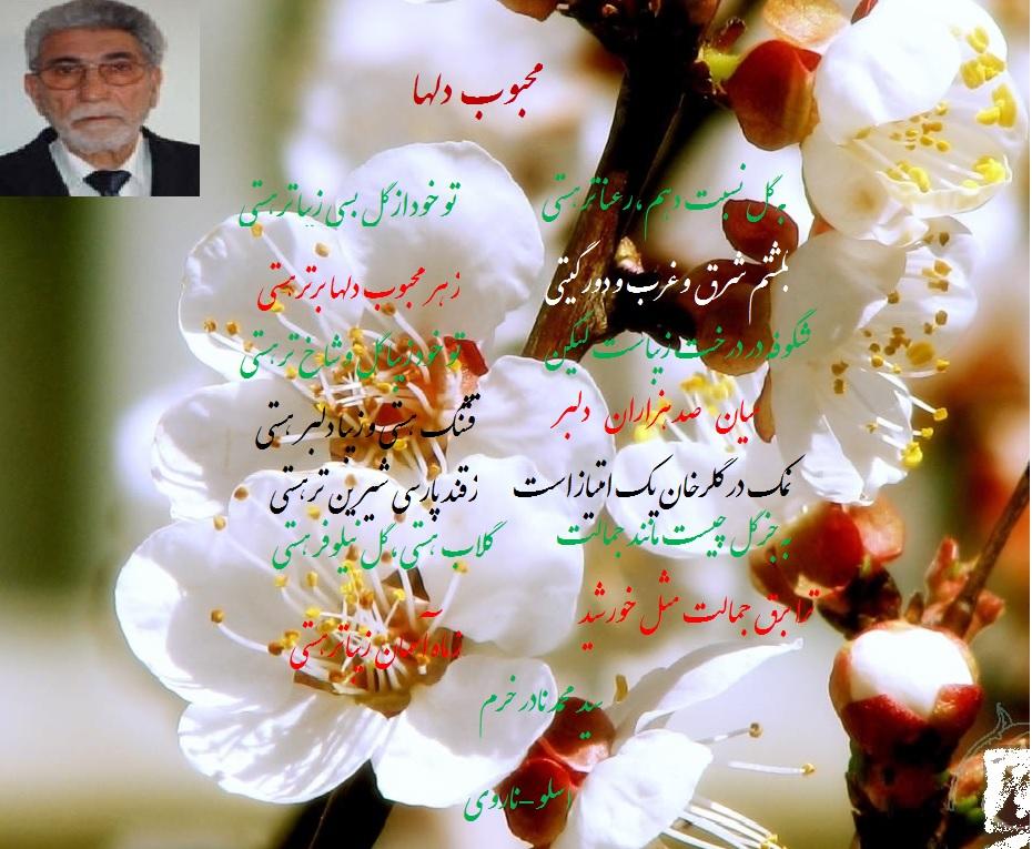 Mahbooooobe Qalbha Peot in Page 06