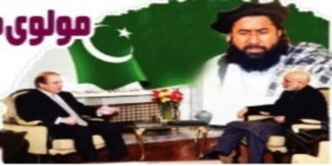 یک روزنامه پاکستانی فاش کرد : طرح تشکیل دولت مشترک وسیع البنیاد برهبریی حامد کرزی  به اشتراک حزب اسلامی و تحریک طالبان تا سال ۲۰۱۸ میلادی