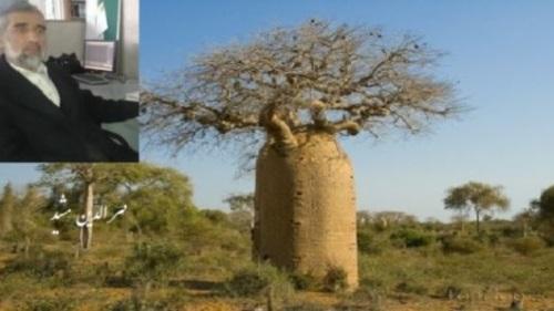 درخت تـنومند دوسـتی هـارا قامـت آرایی هـای قدرت به لرزه میآورد!