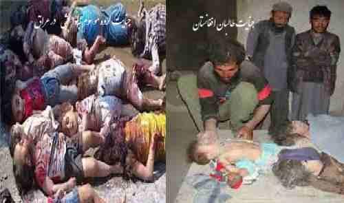 طالبان الگوی جنایات داعش یا داعش الگوی جنایات برای طالبان افغانستان !