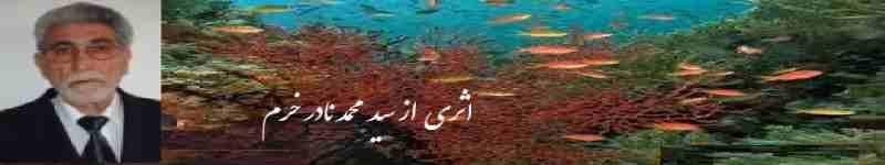 Nader Khoram Naam 04