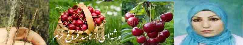 forogh khoram name 26
