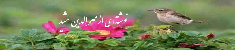 masheed  Khaterat 07