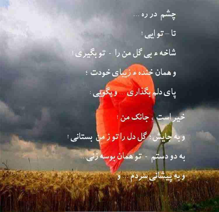 Jadai Hasti 06 Zainab.jpg2