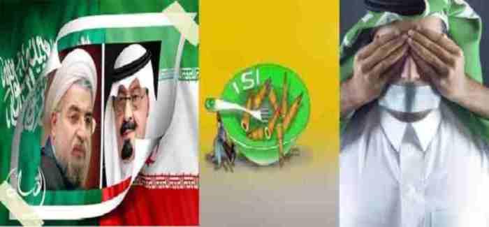 pakistan and saudi relation and Yeman Crase30