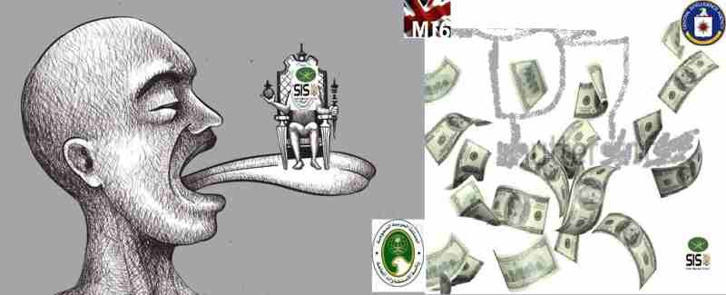 Democracy Cartoon27