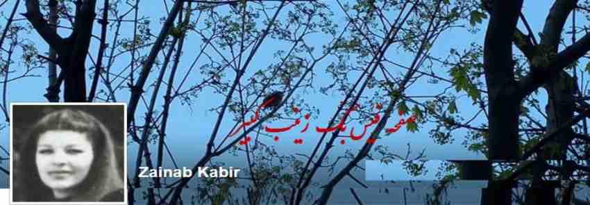 Zainab kabir FAAAAAce Book 06