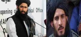 د طالبانو د سیاسی کمیسون مشر سید محمد طیب آغا د استعفی اړوند !