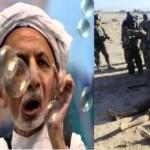 مرغ رئیس غنی یک لینگ دارد و از ابقای معصوم ستانکزی در پُست  وزارت دفاع افغانستان به هر قیمت دفاع میکند . !!