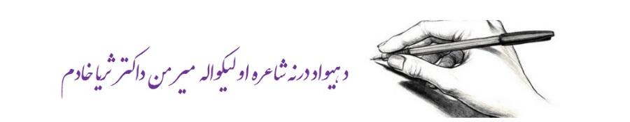 Soraya Khadem Name 31