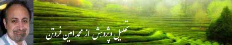 Forotan Naam and green 22