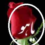 yahoo Masheed 19A