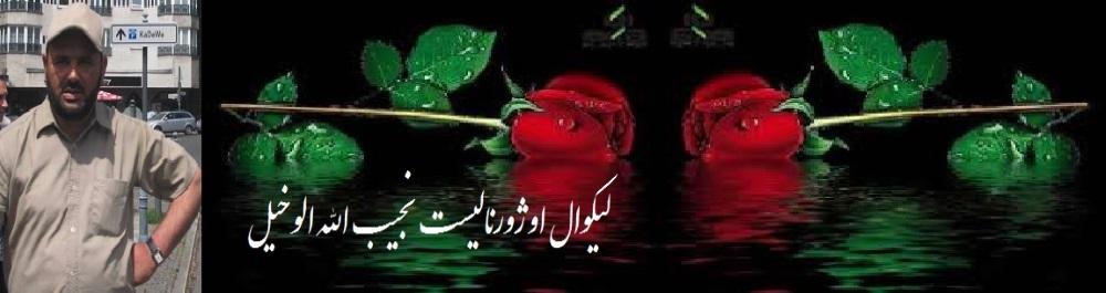 Najibullah Alokhel Name