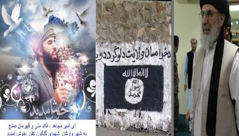 حکمتیاردرسفربـه هـرات !زمینه      سازی برای داعش ویااهداف دیگر؟